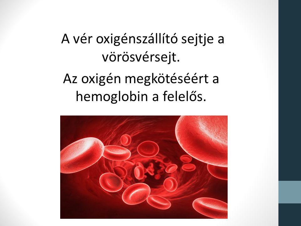 A vér oxigénszállító sejtje a vörösvérsejt