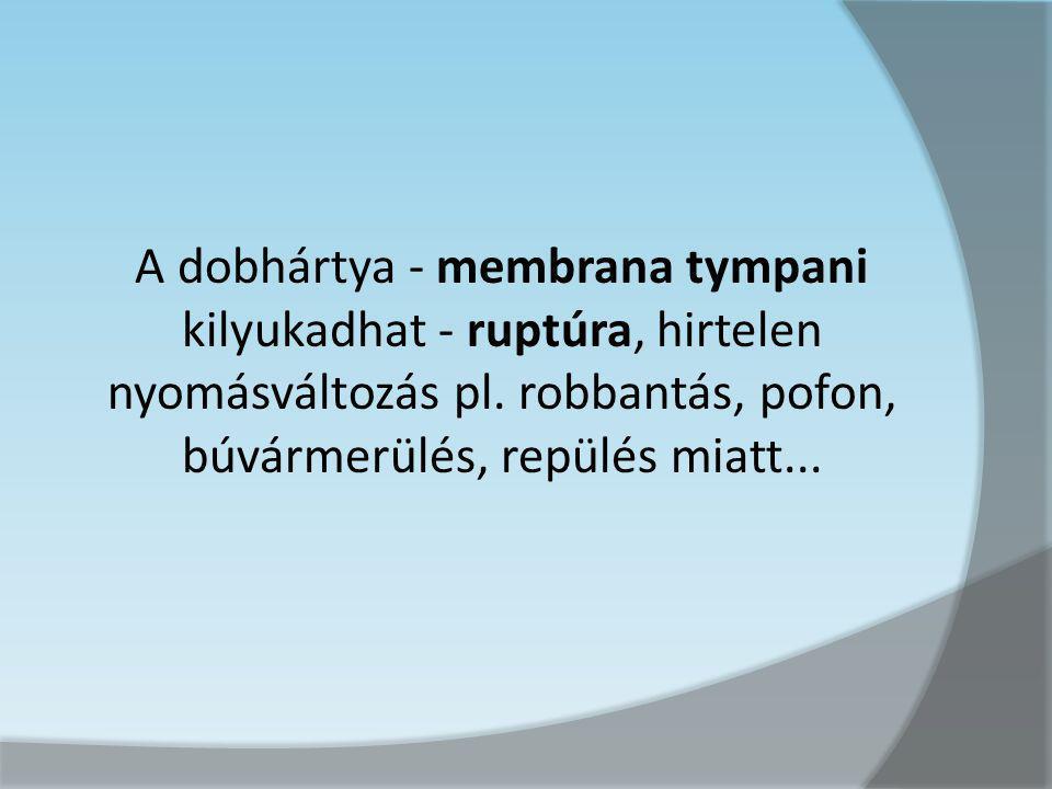 A dobhártya - membrana tympani kilyukadhat - ruptúra, hirtelen nyomásváltozás pl.