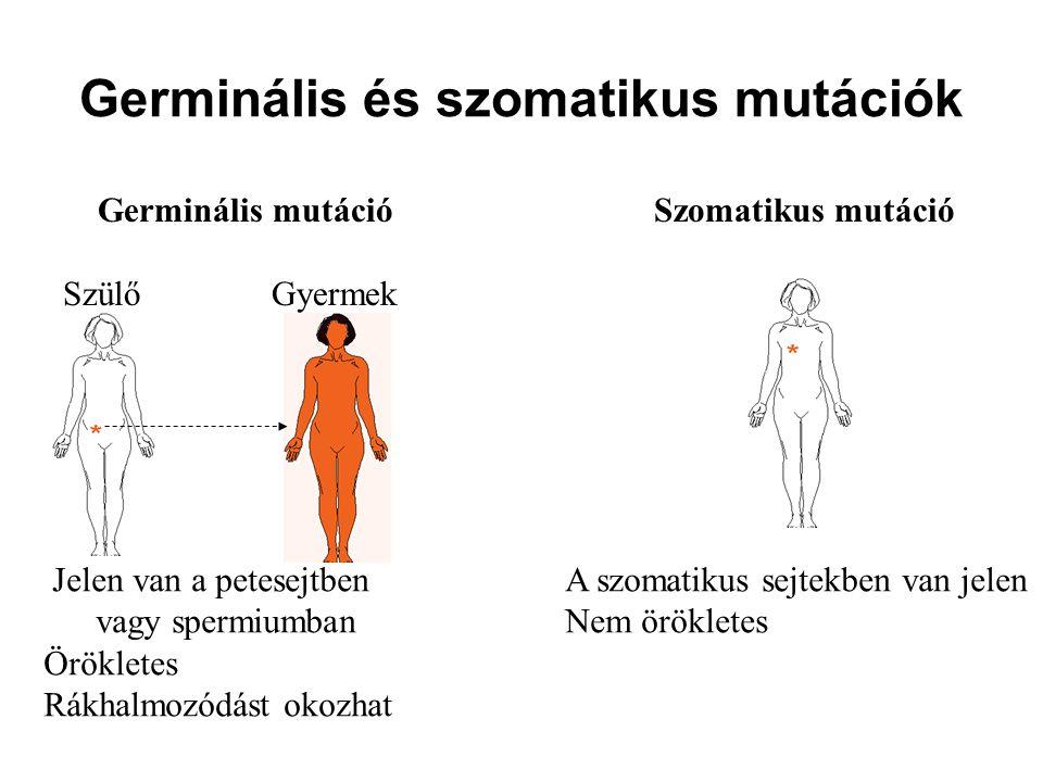 Germinális és szomatikus mutációk