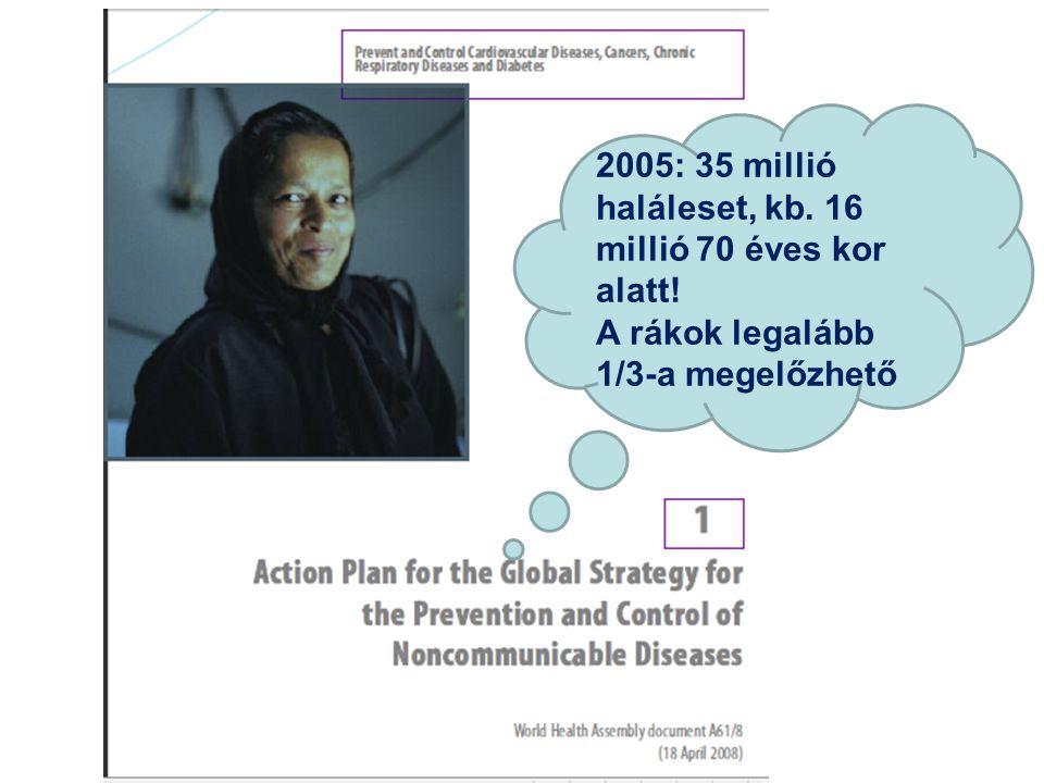 2005: 35 millió haláleset, kb. 16 millió 70 éves kor alatt!