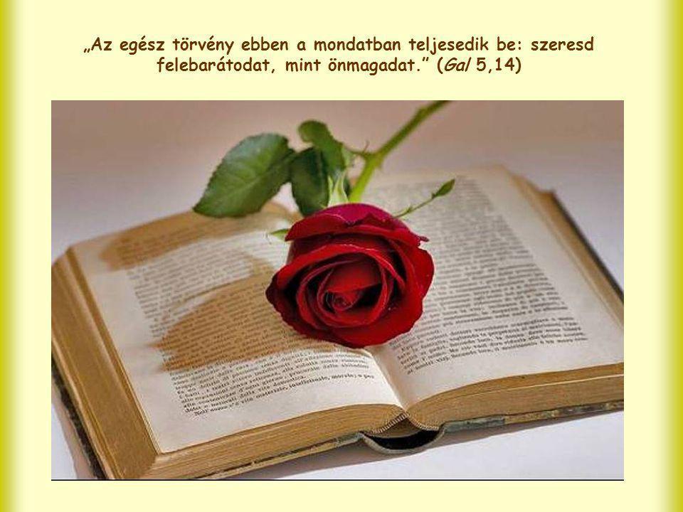 """""""Az egész törvény ebben a mondatban teljesedik be: szeresd felebarátodat, mint önmagadat. (Gal 5,14)"""