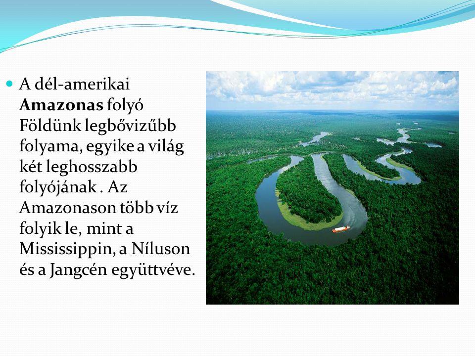 A dél-amerikai Amazonas folyó Földünk legbővizűbb folyama, egyike a világ két leghosszabb folyójának .