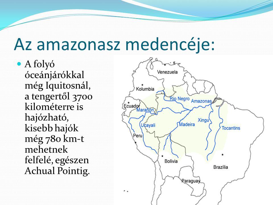 Az amazonasz medencéje: