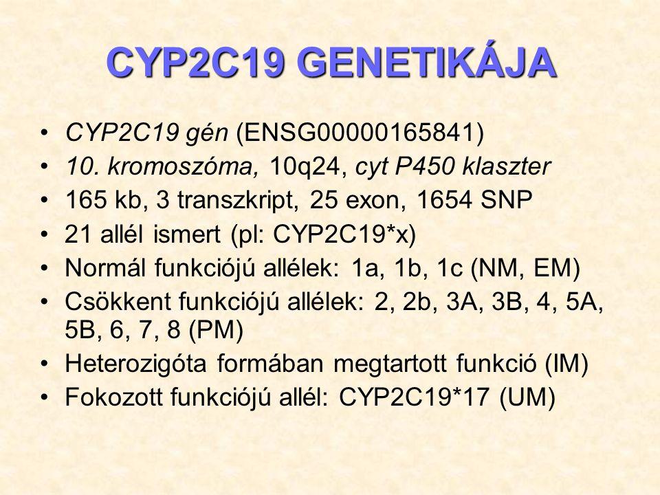 CYP2C19 GENETIKÁJA CYP2C19 gén (ENSG00000165841)