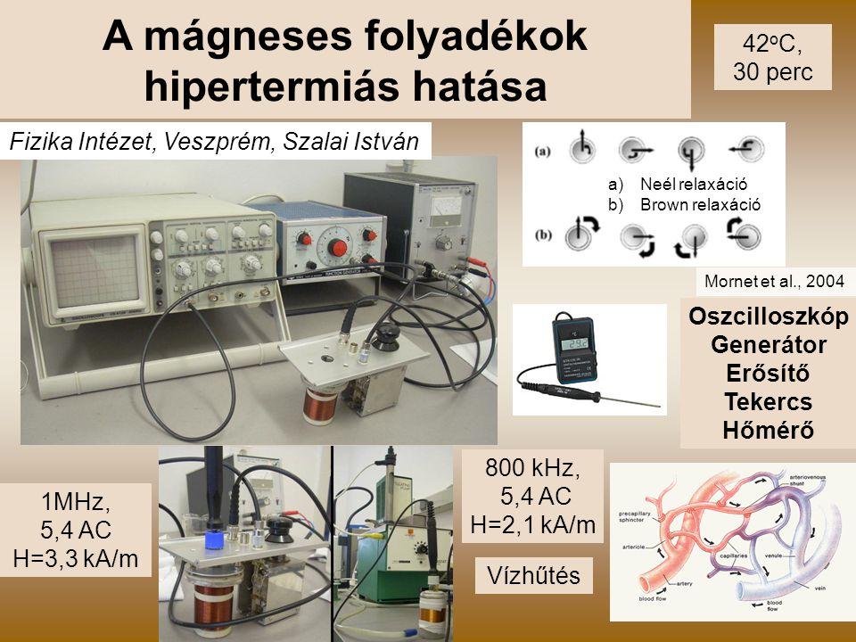 A mágneses folyadékok hipertermiás hatása