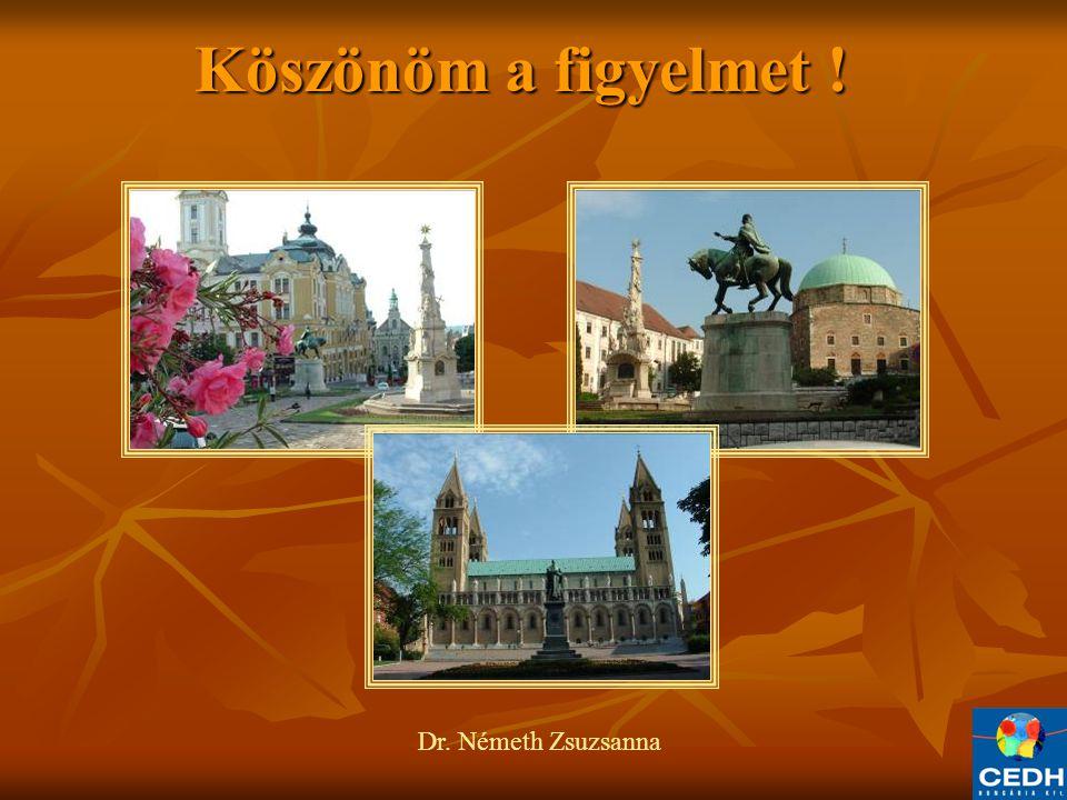 Köszönöm a figyelmet ! Dr. Németh Zsuzsanna