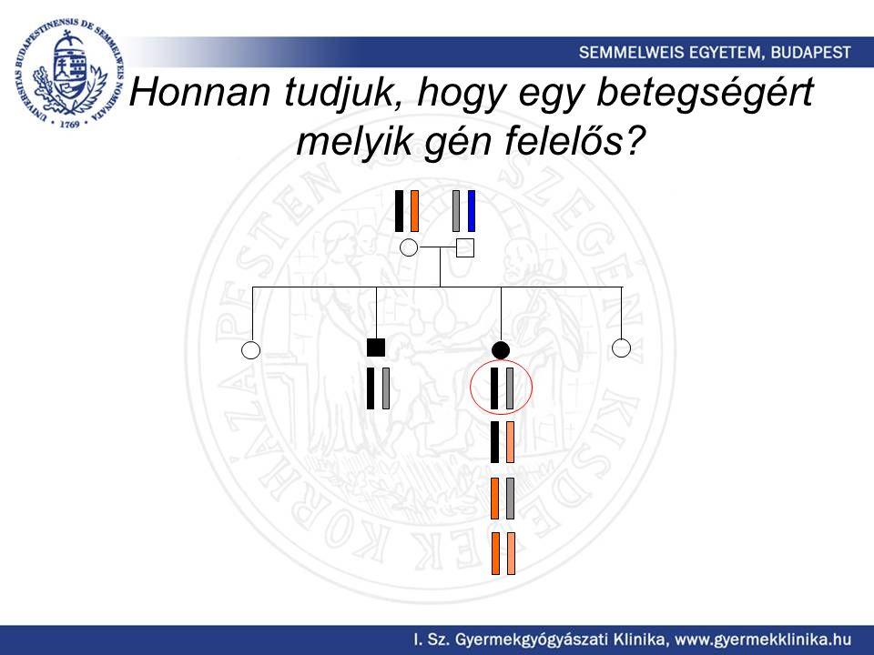 Honnan tudjuk, hogy egy betegségért melyik gén felelős
