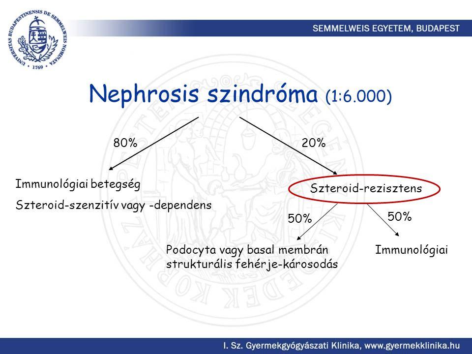 Nephrosis szindróma (1:6.000)