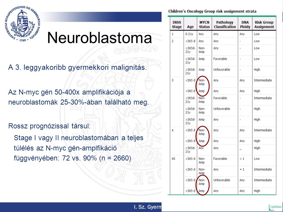 Neuroblastoma A 3. leggyakoribb gyermekkori malignitás.
