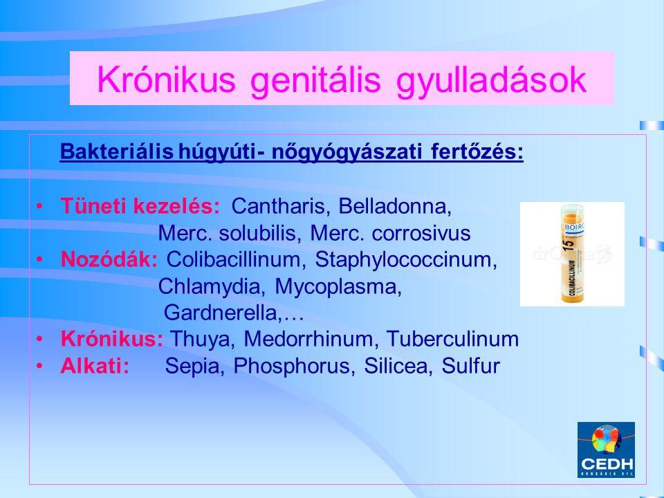 Krónikus genitális gyulladások