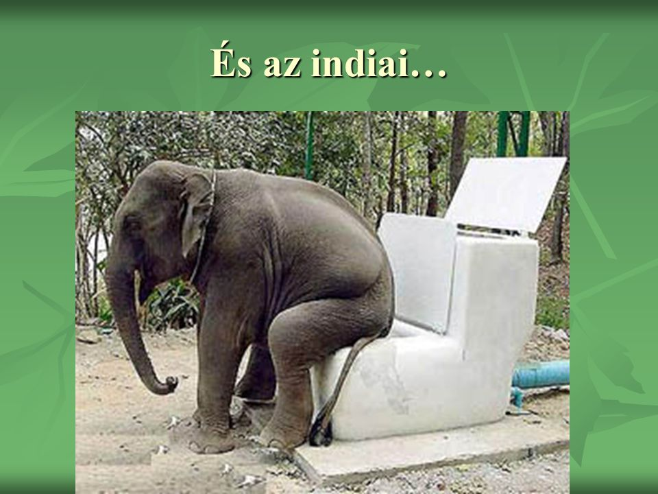 És az indiai…