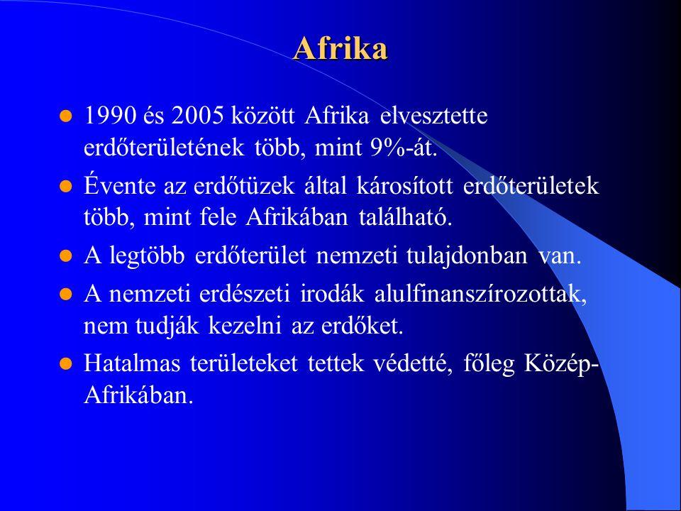 Afrika 1990 és 2005 között Afrika elvesztette erdőterületének több, mint 9%-át.