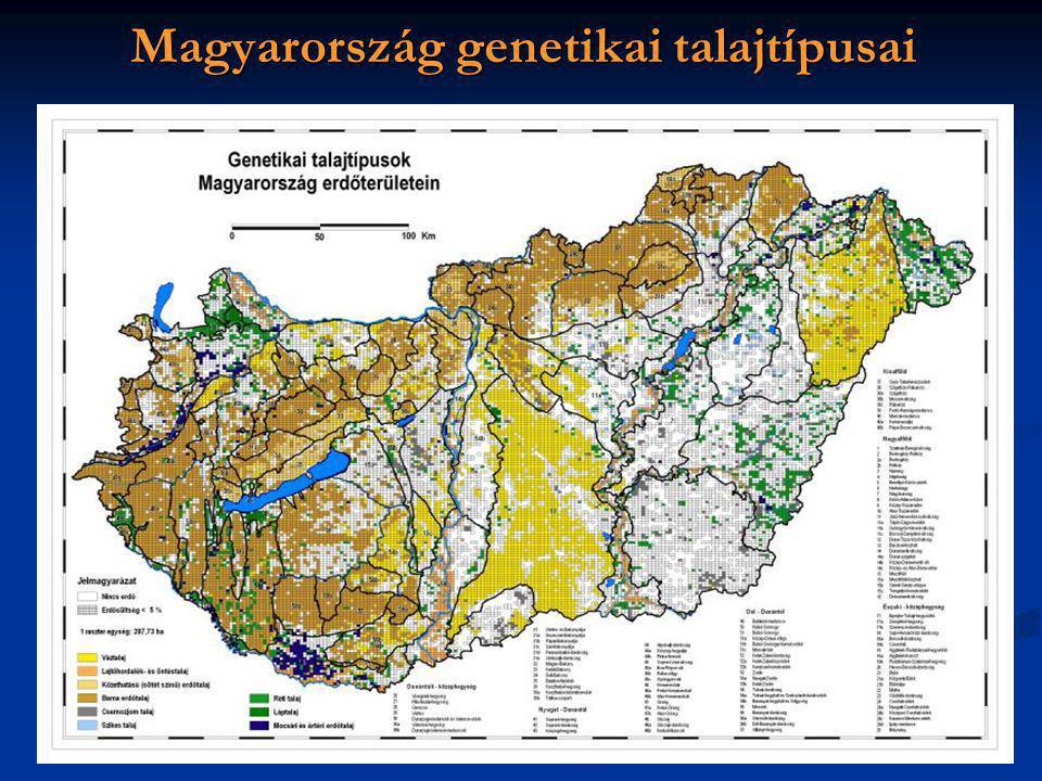 Magyarország genetikai talajtípusai