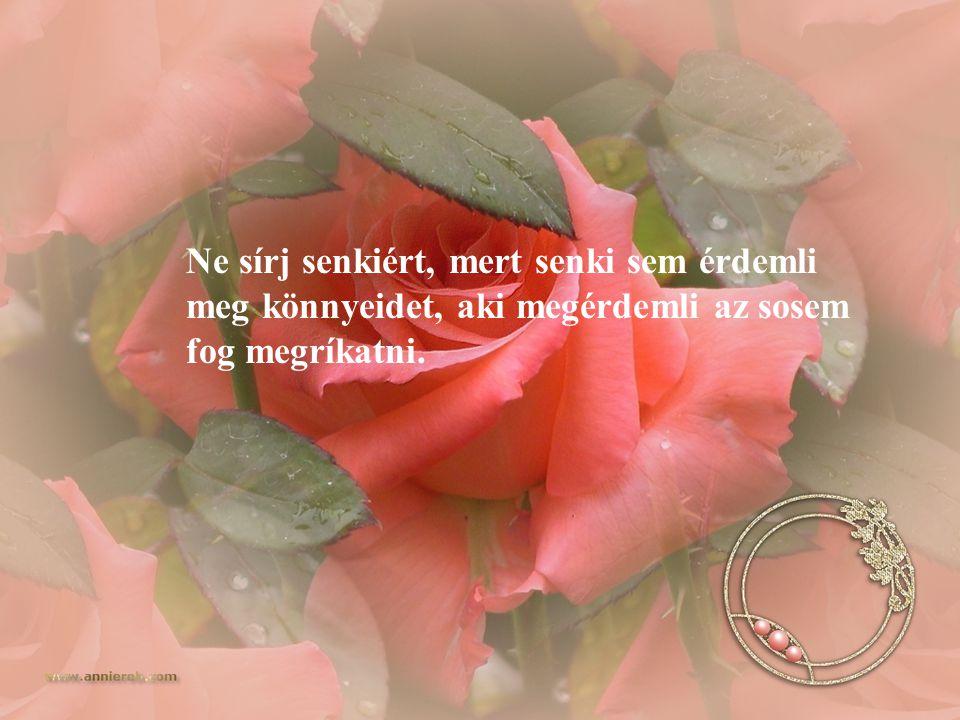 Ne sírj senkiért, mert senki sem érdemli meg könnyeidet, aki megérdemli az sosem fog megríkatni.
