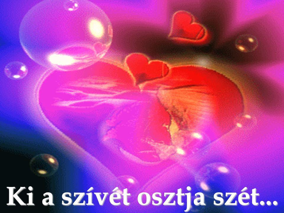Ki a szívét osztja szét...