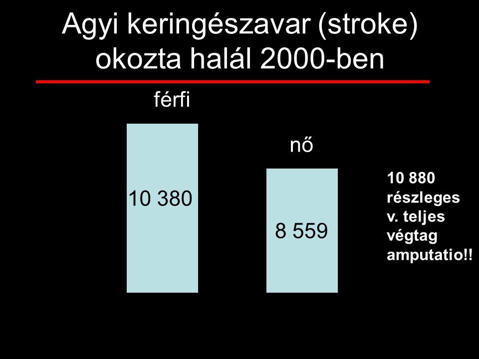 Agyi keringészavar (stroke) okozta halál 2000-ben