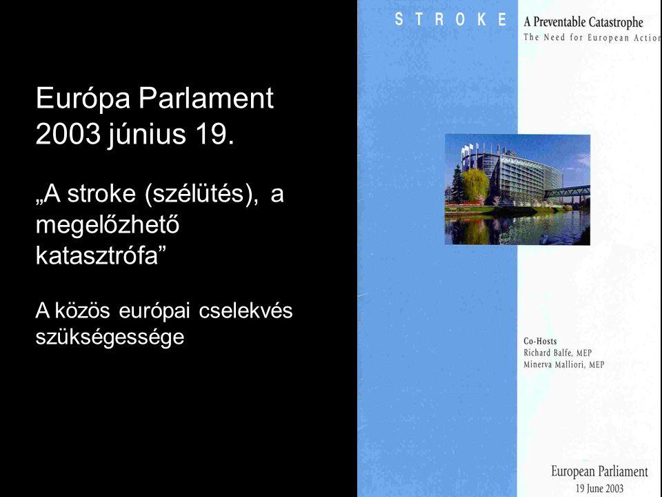 """Európa Parlament 2003 június 19. """"A stroke (szélütés), a megelőzhető"""