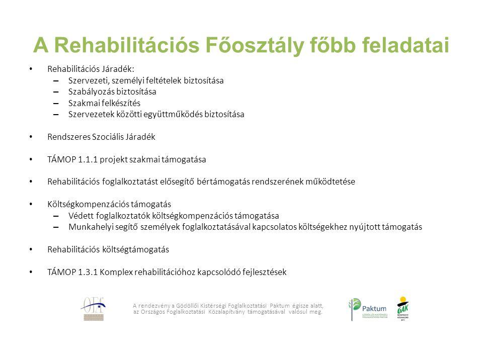 A Rehabilitációs Főosztály főbb feladatai