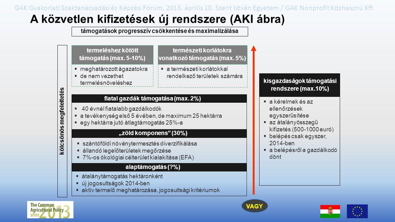 A közvetlen kifizetések új rendszere (AKI ábra)