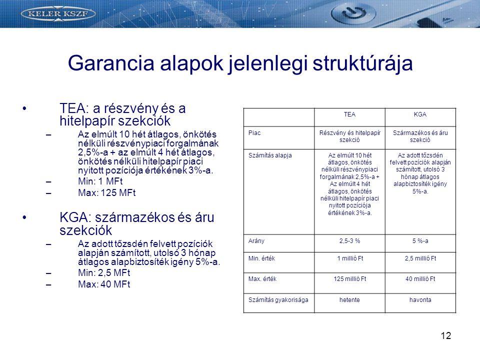 Garancia alapok jelenlegi struktúrája
