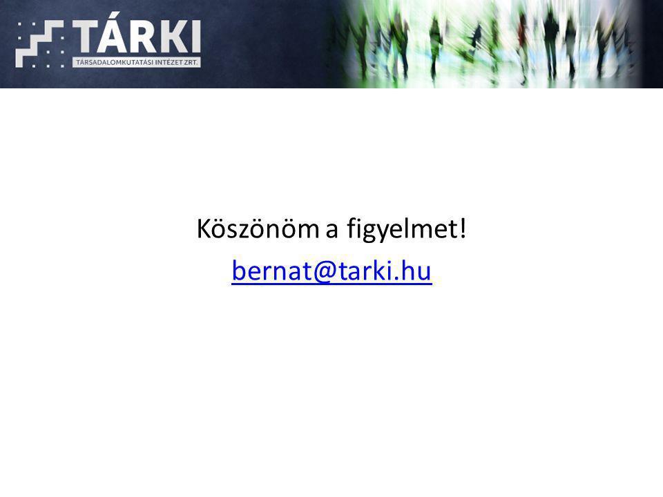 Köszönöm a figyelmet! bernat@tarki.hu