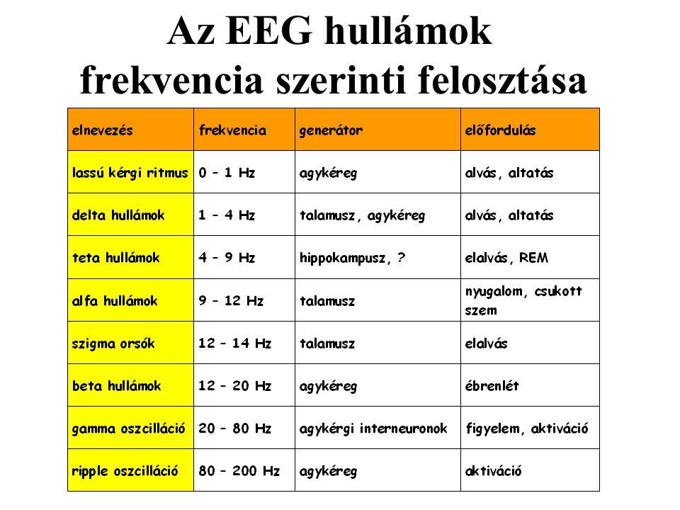 frekvencia szerinti felosztása