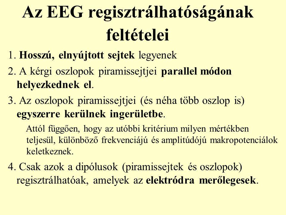 Az EEG regisztrálhatóságának