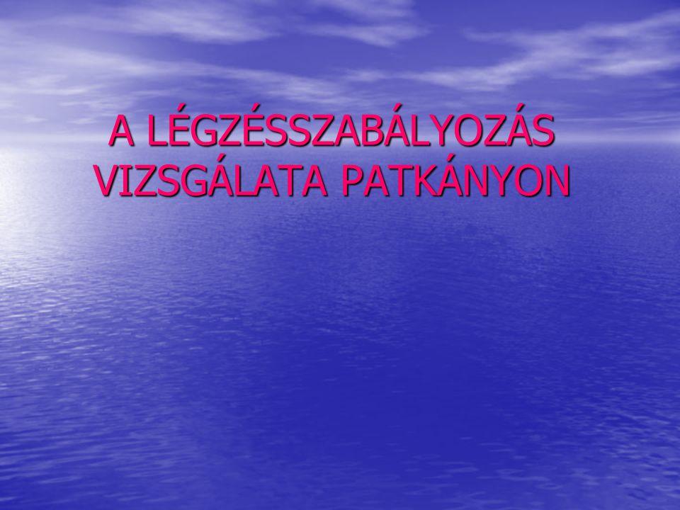 A LÉGZÉSSZABÁLYOZÁS VIZSGÁLATA PATKÁNYON