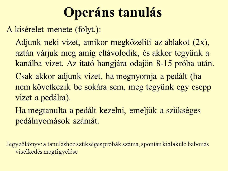 Operáns tanulás A kisérelet menete (folyt.):