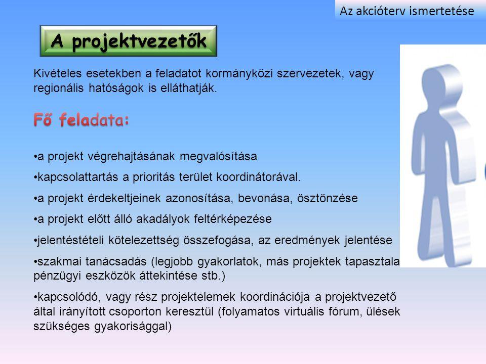 A projektvezetők Fő feladata: Az akcióterv ismertetése