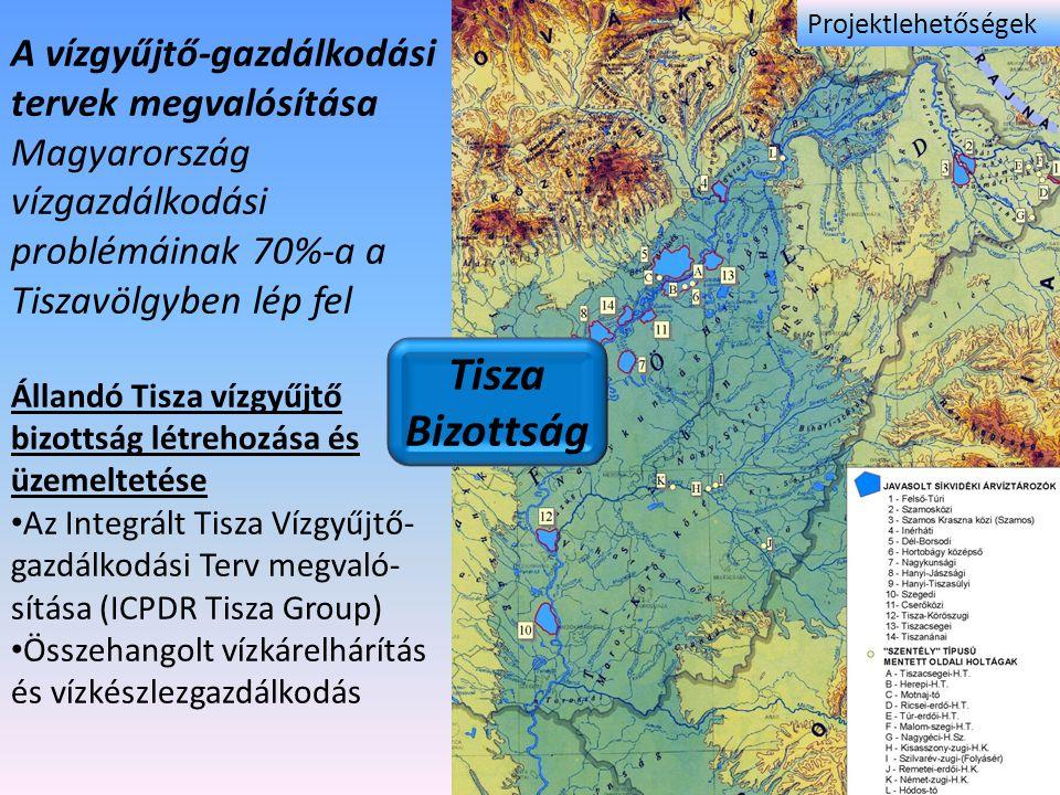 Tisza Bizottság A vízgyűjtő-gazdálkodási tervek megvalósítása