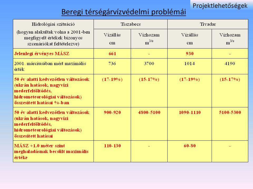 Beregi térségárvízvédelmi problémái