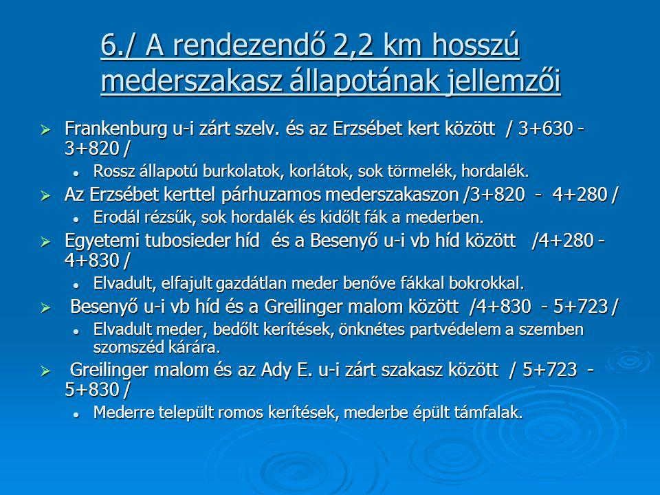 6./ A rendezendő 2,2 km hosszú mederszakasz állapotának jellemzői