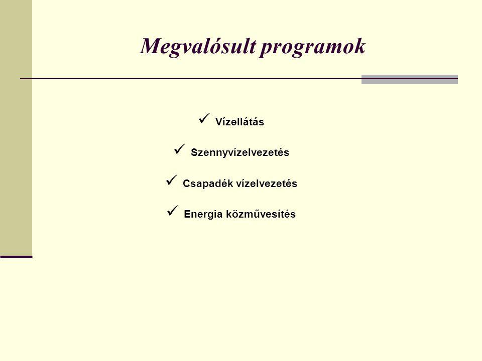 Megvalósult programok