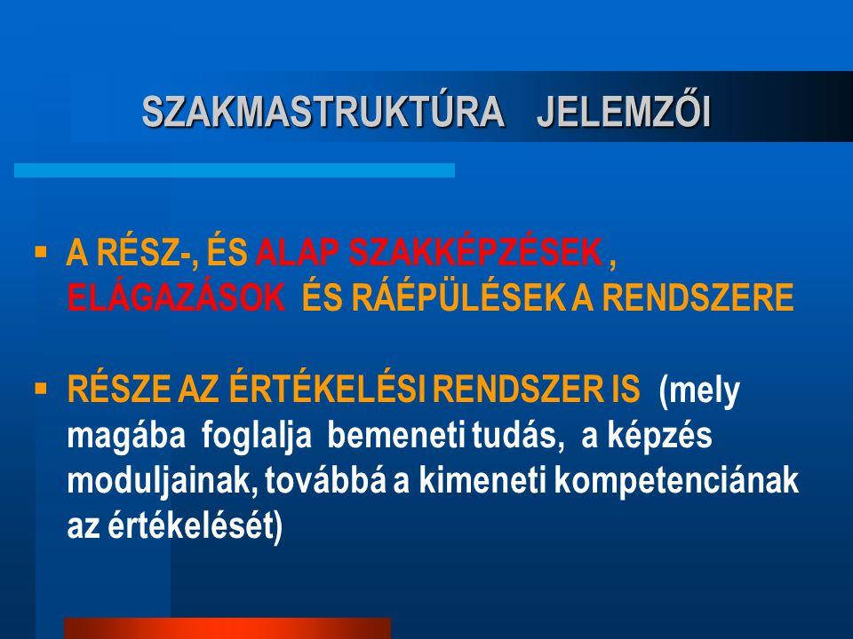 SZAKMASTRUKTÚRA JELEMZŐI