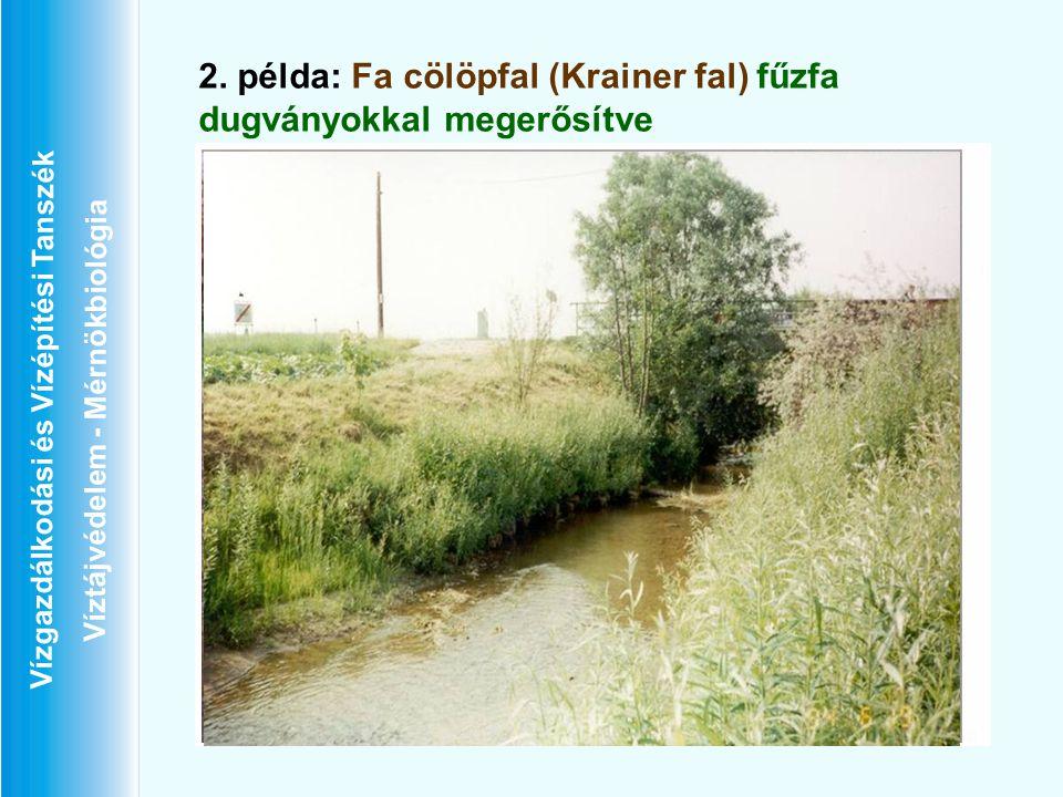 2. példa: Fa cölöpfal (Krainer fal) fűzfa dugványokkal megerősítve