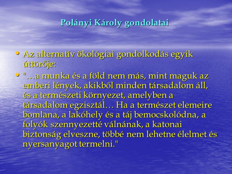 Polányi Károly gondolatai