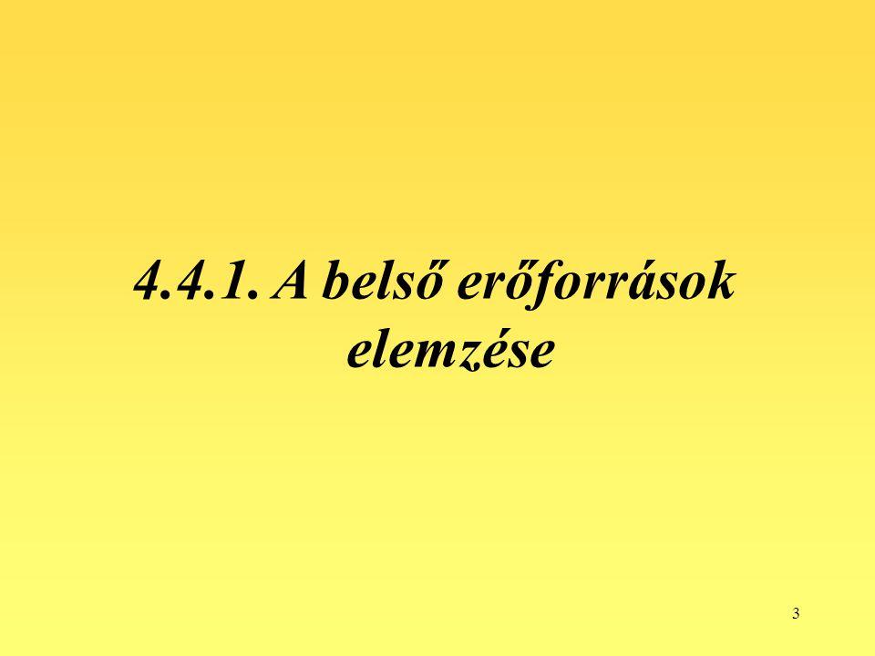 4.4.1. A belső erőforrások elemzése