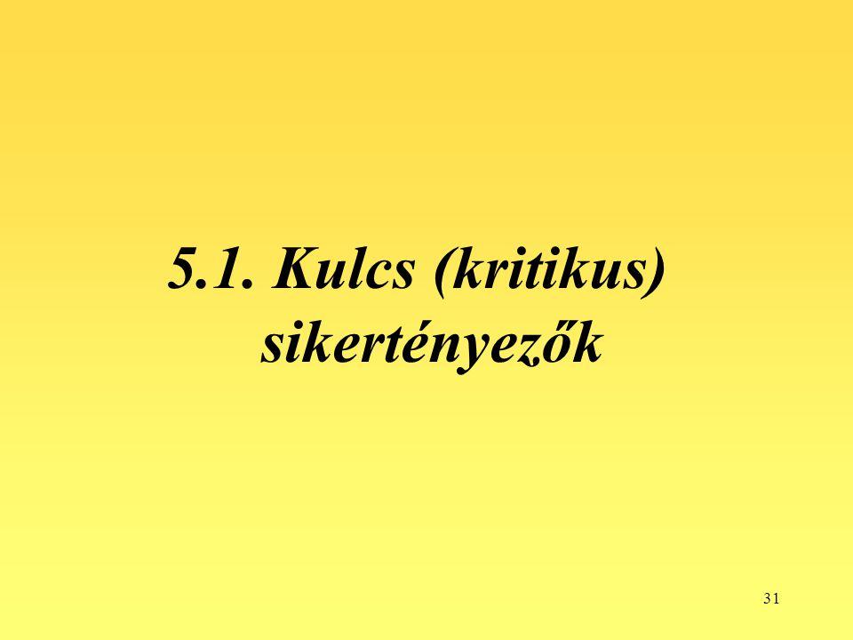 5.1. Kulcs (kritikus) sikertényezők