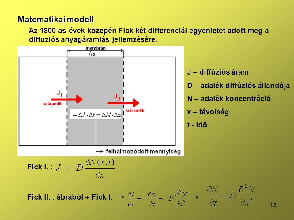 Matematikai modell Az 1800-as évek közepén Fick két differenciál egyenletet adott meg a diffúziós anyagáramlás jellemzésére.