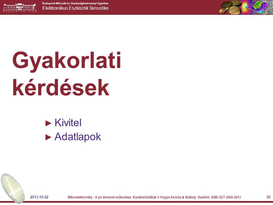 Gyakorlati kérdések Kivitel Adatlapok 2013-10-02