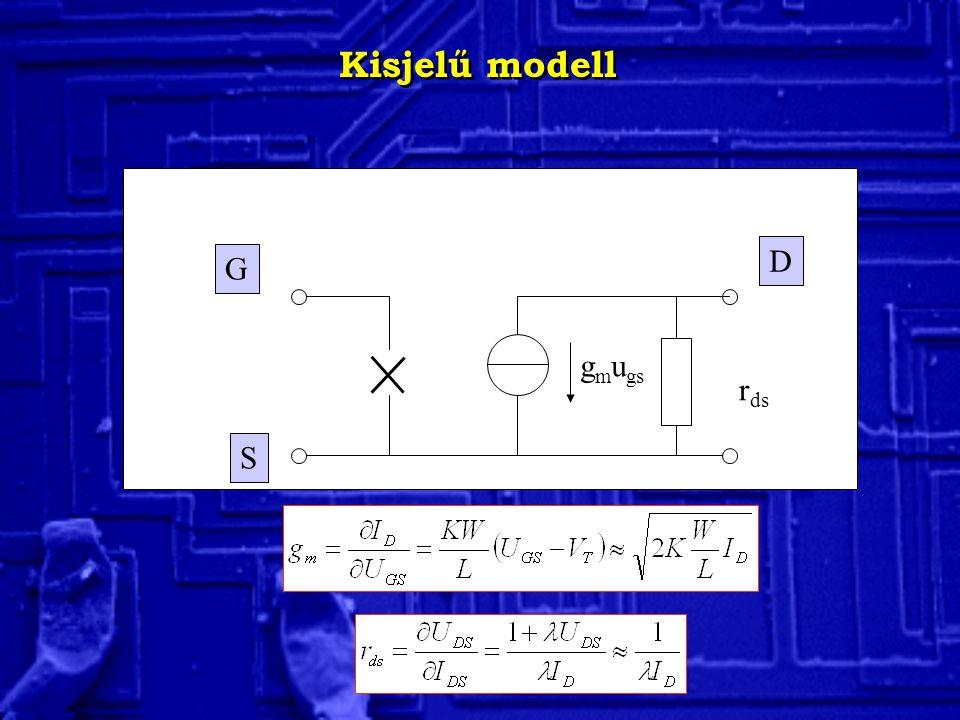 Kisjelű modell D G gmugs rds S
