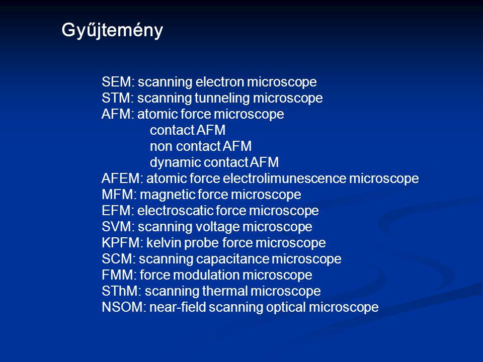Gyűjtemény SEM: scanning electron microscope