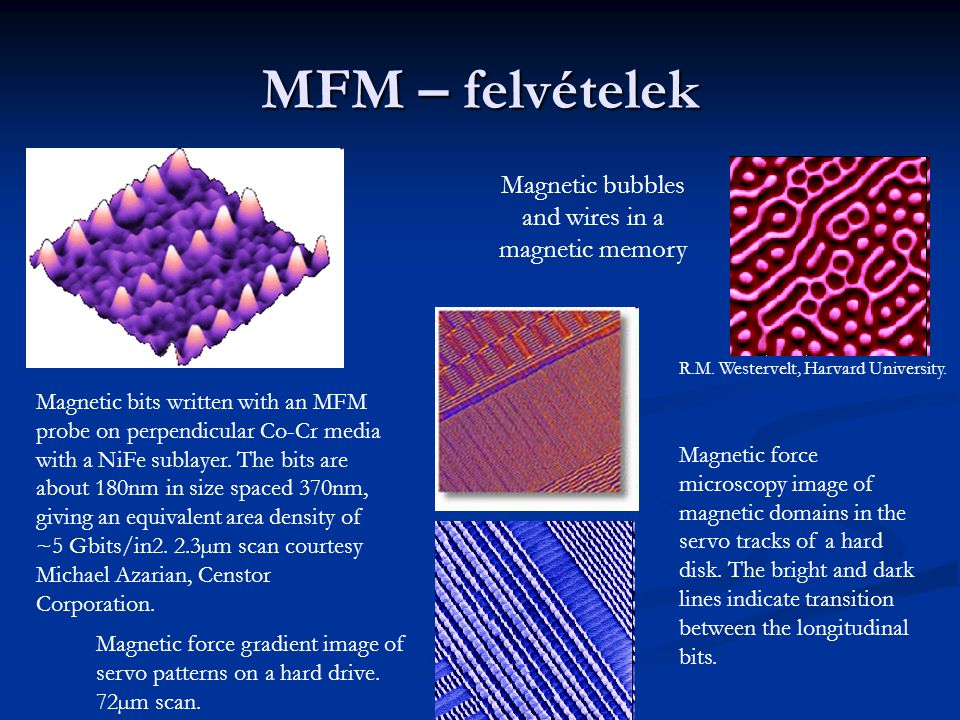 Magnetic bubbles and wires in a magnetic memory