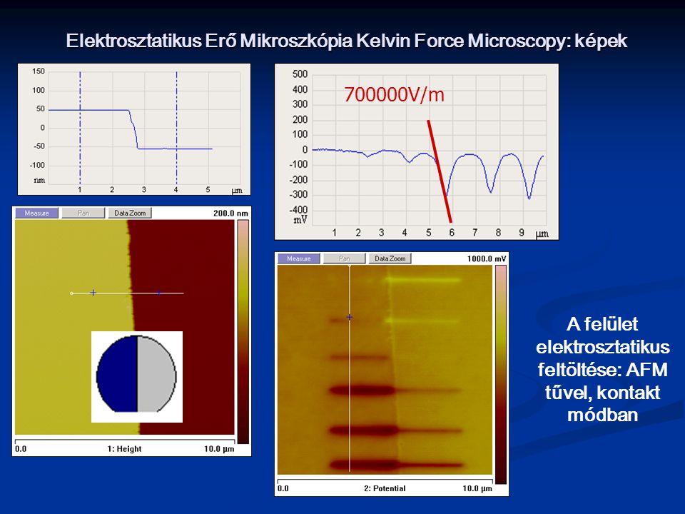 Elektrosztatikus Erő Mikroszkópia Kelvin Force Microscopy: képek
