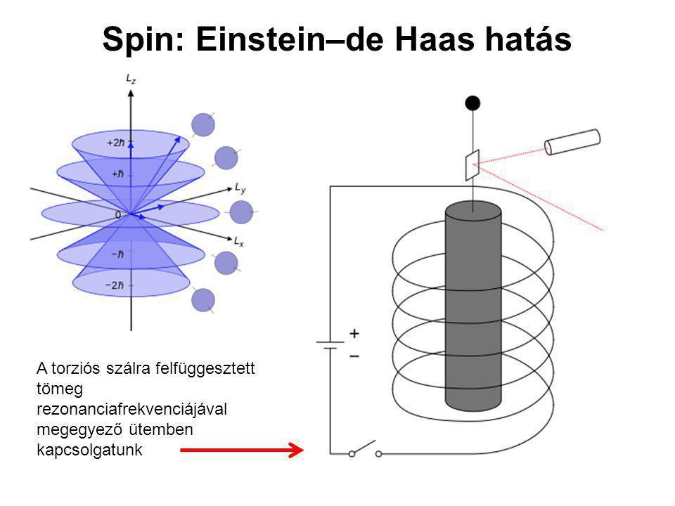 Spin: Einstein–de Haas hatás