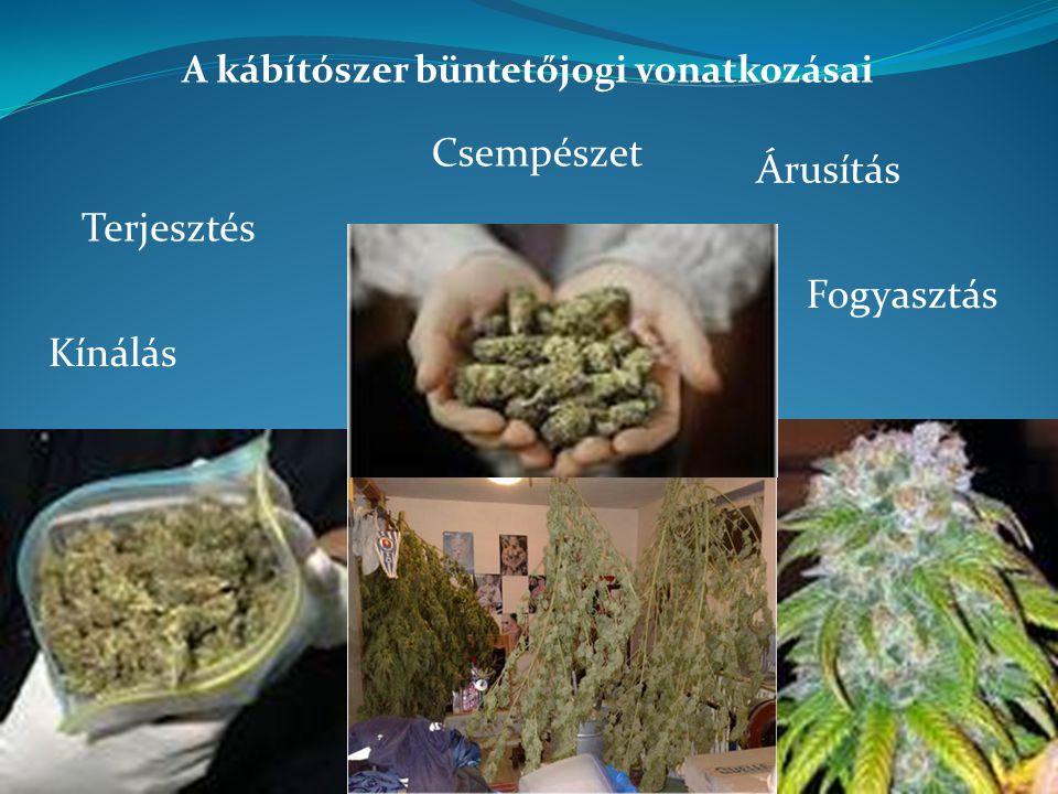 A kábítószer büntetőjogi vonatkozásai