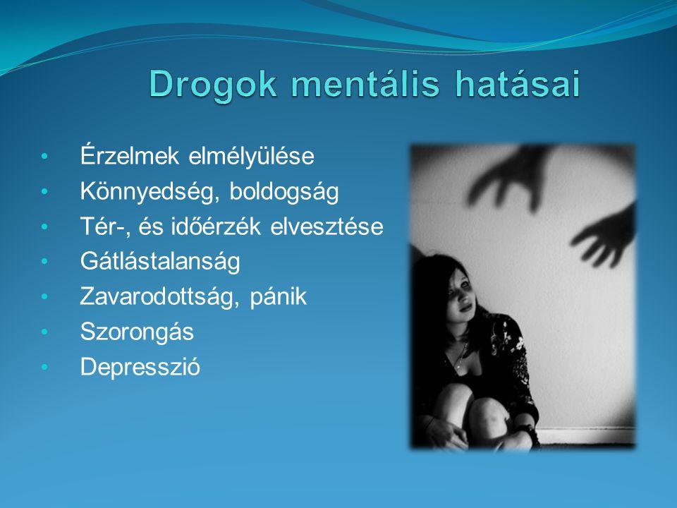 Drogok mentális hatásai
