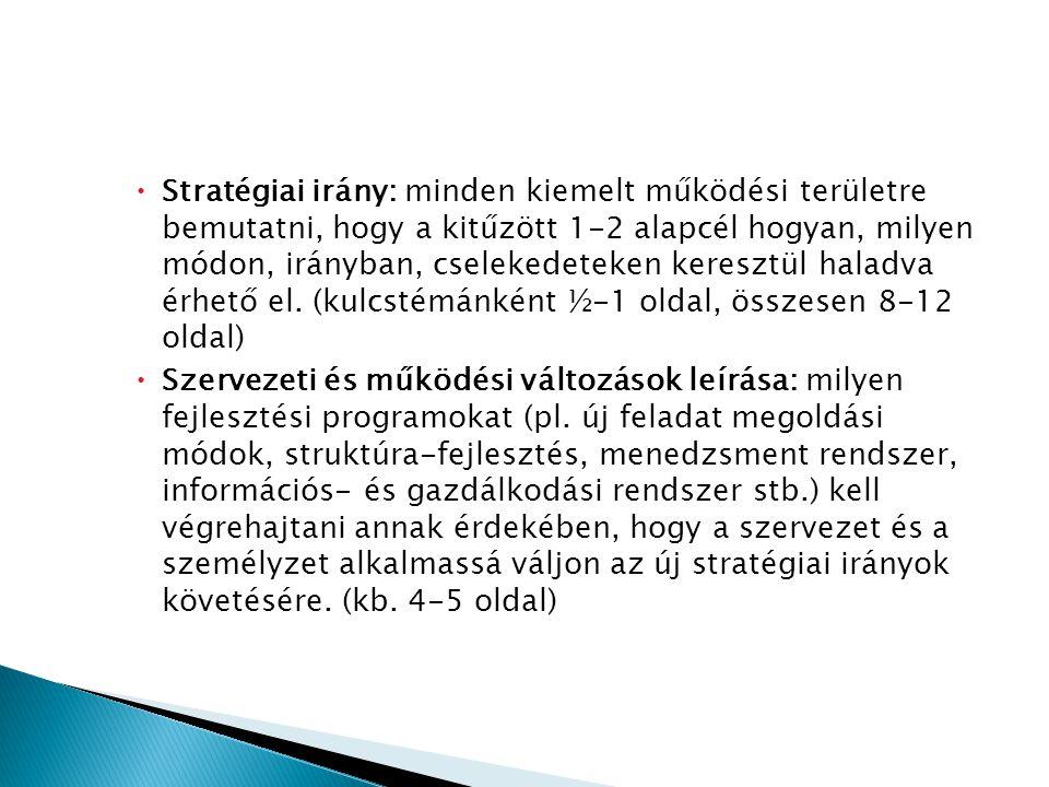Stratégiai irány: minden kiemelt működési területre bemutatni, hogy a kitűzött 1-2 alapcél hogyan, milyen módon, irányban, cselekedeteken keresztül haladva érhető el. (kulcstémánként ½-1 oldal, összesen 8-12 oldal)