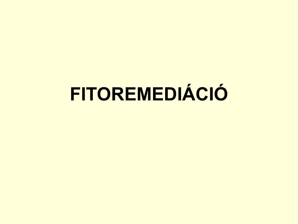 FITOREMEDIÁCIÓ